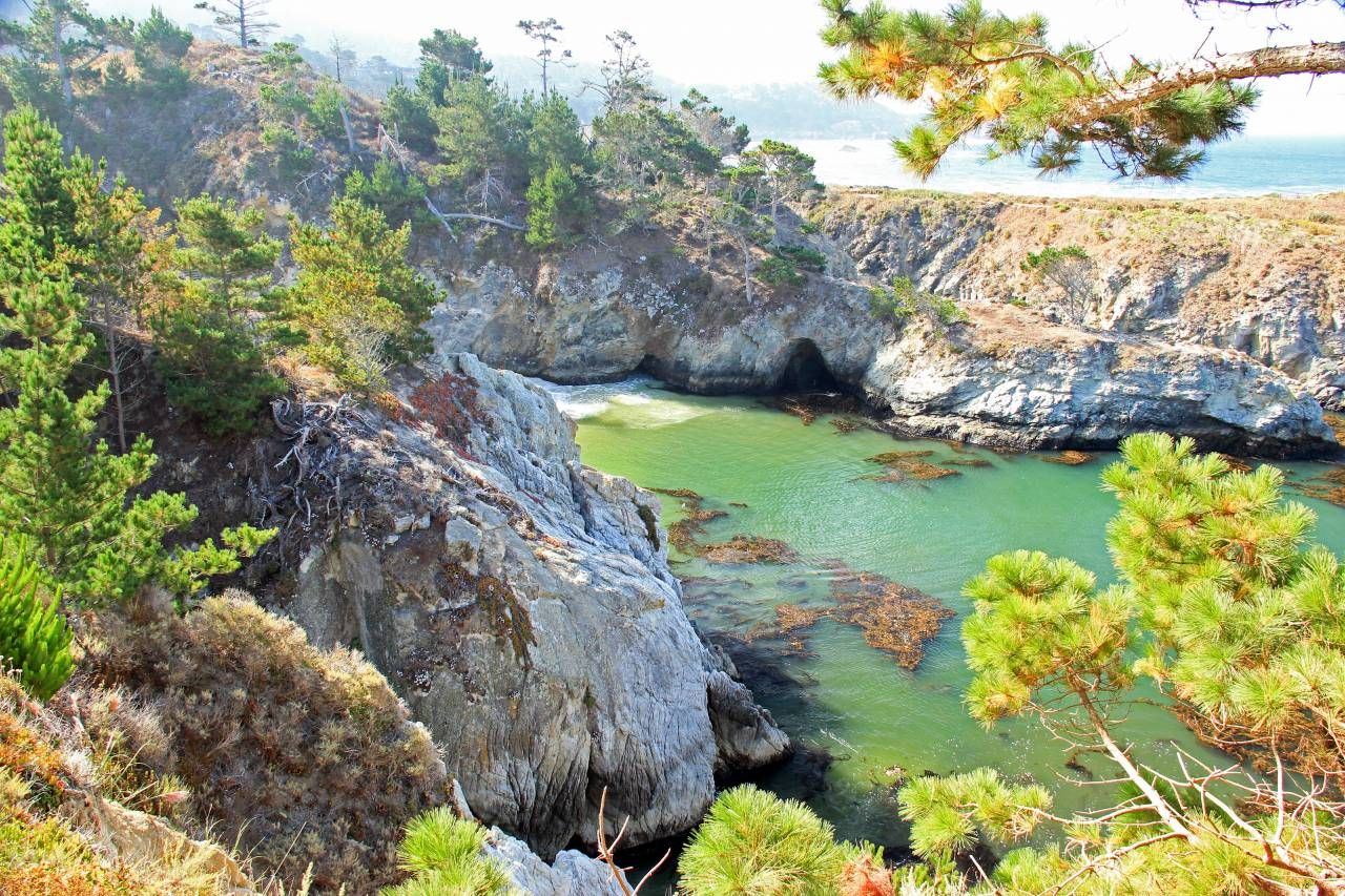 point lobos syl 2