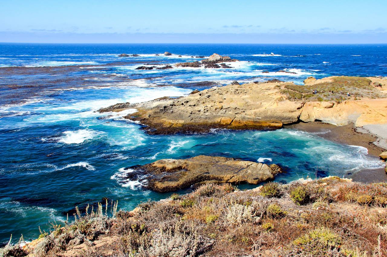 point lobos syl 4