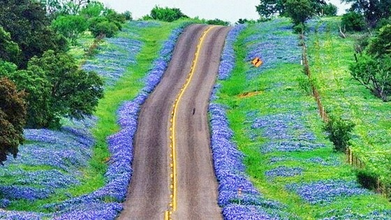 texas-hills-cycling-03