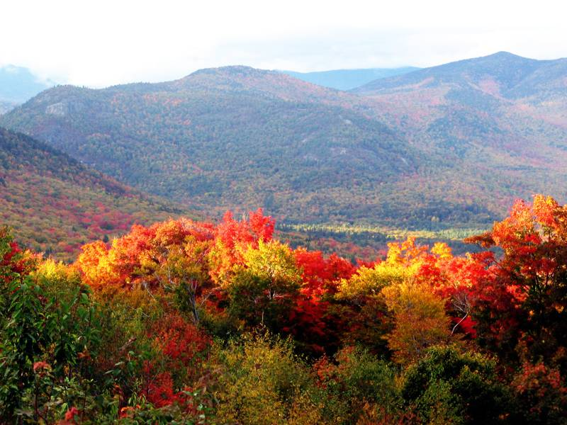 maine-foliage-bike-tour